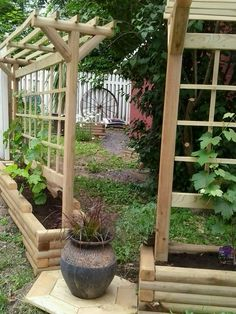 Rose Gardening For Beginners grape trellis - Can you prune grape vines during growing season grape growing conditions,grape growing zones growing cabernet sauvignon grapes,growing grapes in zone 5 how to grow grapes in a pot. Small Vegetable Gardens, Vegetable Garden For Beginners, Gardening For Beginners, Vegetable Gardening, Urban Gardening, Flower Gardening, Small Gardens, Grape Vine Trellis, Grape Vines