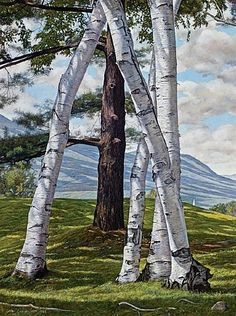 Luigi Lucioni (American-Italian, 1900-1988) | The Pine Through the Birches, 1979