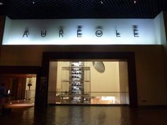 88 Things You Should Do In Las Vegas: Visit The Towering Collection Of Wine At Aureole Las Vegas
