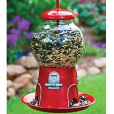 I know we have an old and borken gumball machine out in our shed. I'm going to turn it into a bird feeder. Yes!