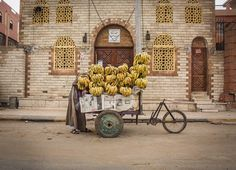 Daily Dozen for April 22, 2016 — Photos -- National Geographic Your Shot