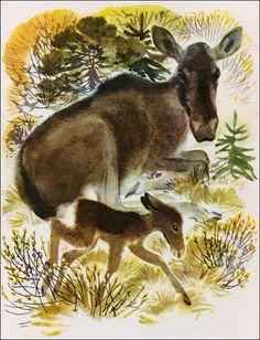 Animalarium: Lisa Larson