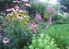 Ihre Farben Müssen Nicht übereinstimmen, Damit Einen Garten Schönen Und  Ansprechenden, Jedoch Machen.