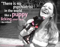 Puppy Quote