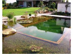 Les plus belles piscine naturelles (22 jolies réalisations)