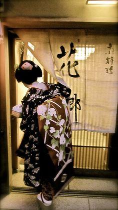 maiko Takamari 花郷と舞妓さん