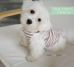 Easy dog T shirt pattern, enjoy sewing a cool homemade T shirt for your dog with these free sewing patterns. Download it in pdf in six different sizes!!