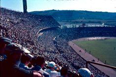 Estádio da Luz 1960, lleno hasta la bandera
