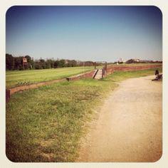 Campo de Golf El Saler. Un Links en Valencia