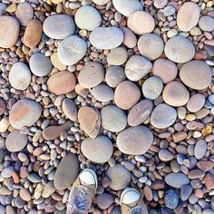 Pretty pebbles at the seaside. Have a lovely day everyone.