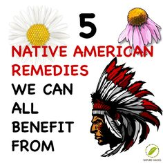 Five Native American Remedies We Can All Learn From
