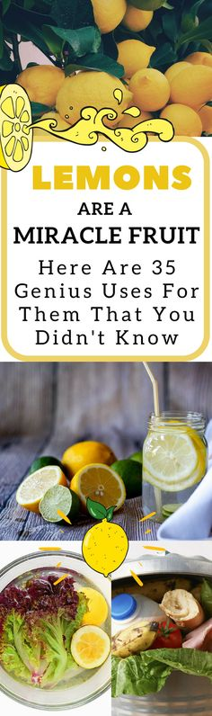 There are so many great uses for lemons around the house. They're great for your skin, health, and beauty in addition to being great for cleaning your household. So when life gives you lemons, you can do a lot more than make lemonade. Diy Hanging Shelves, Diy Wall Shelves, Lifehacks, Mason Jar Crafts, Mason Jars, Diy Blanket Ladder, How To Make Paper, Diy Projects To Try, Dollar Stores