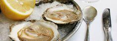 Die französische Brasserie Lipp aus Paris mitten in Zürich Seafood Place, Mussels, Zurich, Camembert Cheese, Dinner, Home Ideas, Oysters, Gourmet Foods, Suppers