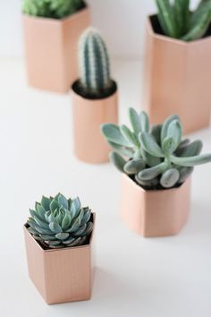 Make It: DIY Metallic Geometric Planters in 5 Minutes » Metal Planters, Diy Planters, Planter Ideas, Concrete Planters, Diy Wall Shelves, Cactus Y Suculentas, Cacti And Succulents, Diy Projects To Try, Indoor Plants