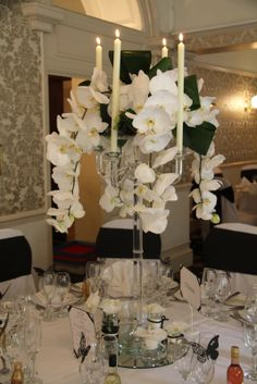 Crystal Candelabras dripping with super elegant Phalaenopsis Orchids