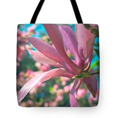 Mellow Magnolia Blossom Tote Bag for Sale by Anna Porter