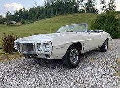 Pontiac Firebird for Sale - Hemmings Motor News Ford Mustang Convertible, 1966 Ford Mustang, Ford Mustang Fastback, Corvette Convertible, Camaro Rs, Chevrolet Chevelle, 1965 Shelby Cobra, Shelby Gt500, Pontiac Firebird For Sale
