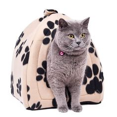 K Keep your kitty happy with fun times with these exotic cute cat houses! Cone Pet Cat Bed Kitten Kennel Very Soft Fabric Dog Bed Pet House Puppy Dog Cat with Paw Cama Para Cachorro Products for Animals size note: height Real Feedback Pet Beds, Dog Bed, Niche Chat, Cat Mat, Warm Bed, Kegel, Cat Supplies, Cat Toys, Cute Cats