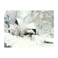 Snowy Cabin New England Winter Photograph wall art Custom Note Cards... ($12) ❤ liked on Polyvore featuring home, home decor, rustic home accessories and rustic home decor
