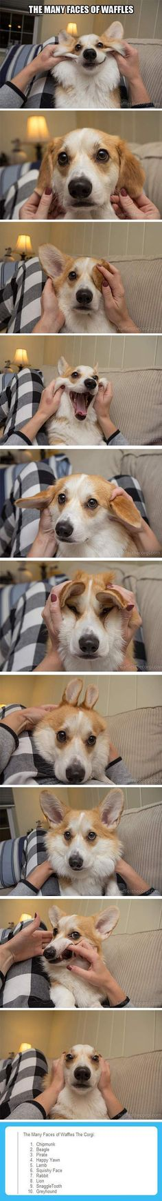 Dump A Day Funny Pictures Of The Day - 105 Pics