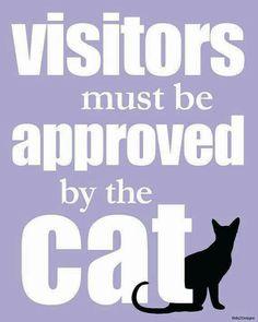 Stencil Meow Spoken Here Kitty Cat Feline Paw Print Pet Kennel Signs U Paint