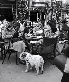 'Wow, Quel Babes!': American Teenagers in Paris in the 1950s