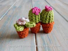 Mini Cactus and Flower Pot