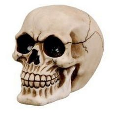 Totenkopf Schädel Skull Deko Fantasy Horror