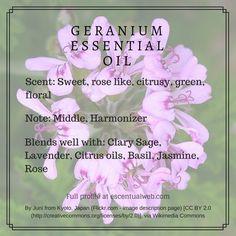 Geranium essential oil profile