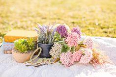 Connie & Jason engagement shoot;  Vintage cloth covered books, michaels romantic flower blooms, west elm brass love sign, picnic, engagement shoot