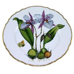 anna weatherley orchid dinnerplate 3  540