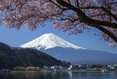 Travel To Mount Fuji: The Magnificent Elegance Of Japan