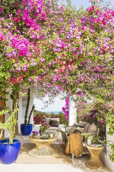 〚 Lovely summer villa with views on the site of old farmhouse in Ibiza 〛#flowers #terrace #garden #spain #interiordesign #homedecor #idea #inspiration #cozy #living #space #home #decor #style #interior #design Ibiza, Outdoor Rooms, Indoor Outdoor, Outdoor Living, Mediterranean Style Decor, Madeira Natural, Heavenly Places, Local Architects, Outside Living