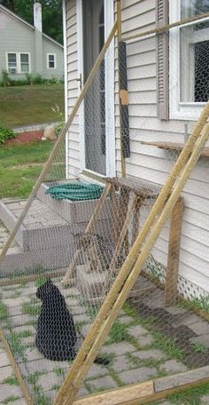 A small catio lean-to. Because the cats like to be outside. Would be even better with a screen on top of the chicken-wire to keep the bugs out.