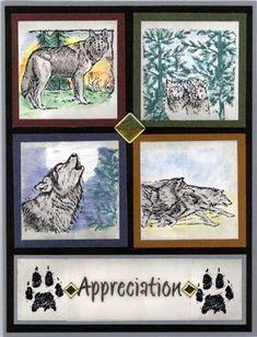 Wolf Appreciation