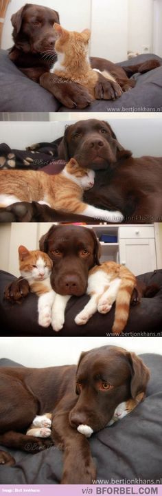 Unlikely friendships are always the best