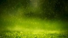 Rain Drop Wallpaper HD Natural Desktop 1920x1200px Resolution