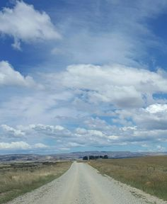 Travelling on a metal road between Nasby and Waitati Dunedin