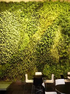 green wall - edible plants? beverages/cocktails?