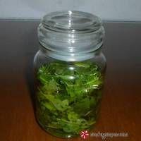Φρέσκος βασιλικός όλο το χειμώνα Pickles, Cucumber, Mason Jars, Recipes, Cellar, Dressings, Food, Rezepte, Essen