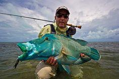 FARQUHAR - SEYCHELLES | Yellow Dog Fly Fishing