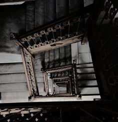 '' the Nazi Germans had the habit of building huge stairs for their victims to tire when they tried to escape. this tactic works to this day, as does my hatred of stairs. Gwendolyn Shepherd, Spirit Fanfic, Home For Peculiar Children, Grunge, Shall We Date, A Series Of Unfortunate Events, The Secret History, Sirius Black, Regulus Black