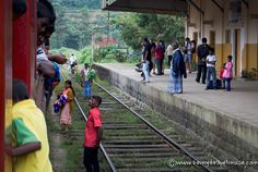 Take the Train in Sri Lanka: The Absolute Best Way to Travel