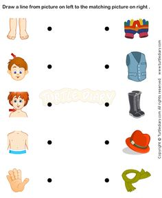 Body Parts Prek worksheets - preschool science