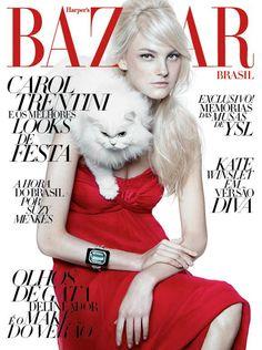 Harpers Bazaar Brazil Dezember 2011 Cover Caroline Trentini by Gui Paganini     (03.24.15)