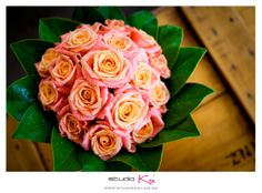 Amazing wedding photography and wedding photographers in Christchurch Photographers, Bouquet, Wedding Photography, Bridal, Rose, Amazing, Flowers, Pink
