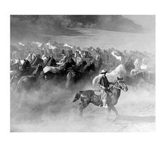 The New York Times Archive - Horses | Pottery Barn