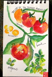 tomato's | watercolor sketch book... tomato & herbs from the… | Flickr