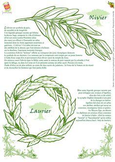 Severine Aubry Olivier Et Laurier, page 31 sur 32 sur HugoLescargot.com