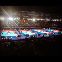 gabifenomeno's photo  of London 2012 venue - ExCel - North Arena One on Instagram
